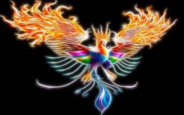 rainbowphoenix